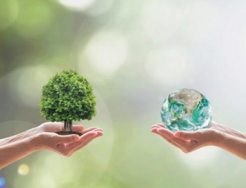 Cómo reducir la huella de carbono de nuestros locales y oficinas