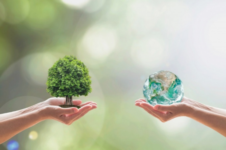 como reducir la huella de carbono