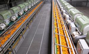 ELIGROUP-Limpieza-sector-alimentario-2